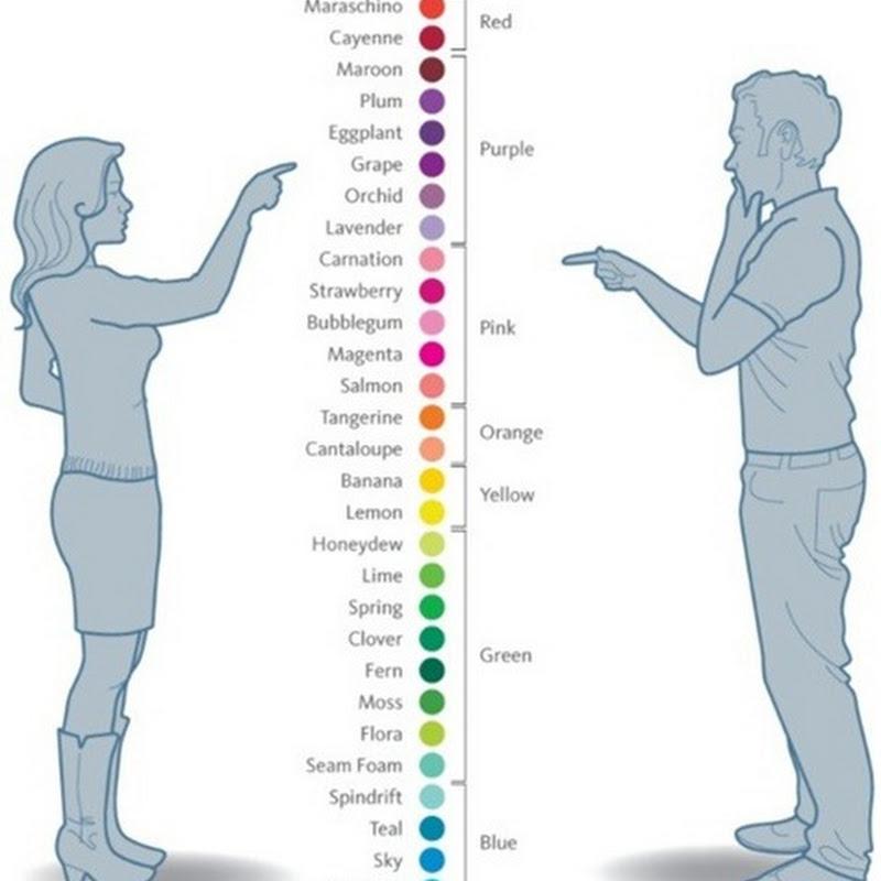 هل يرى الرجال والنساء الأشياء والألوان بطريقة مختلفة ؟