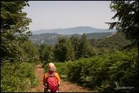 Monte Carpegna