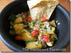 pineapple salsa - The Backyard Farmwife