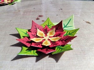 PoinsettiaBox19
