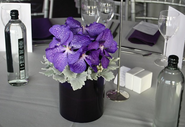 100_0549 mood flowers