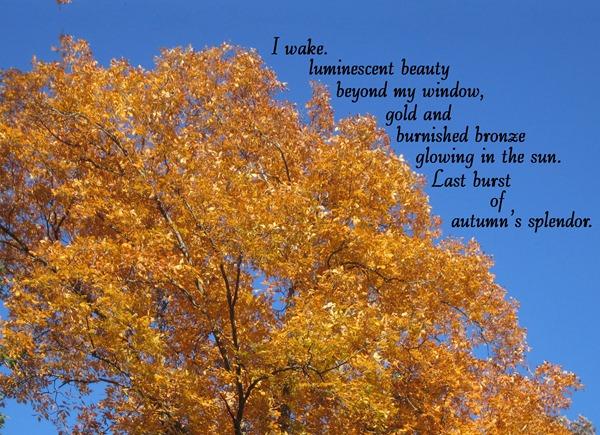 fall poem 3
