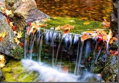 imagini natura - cascade