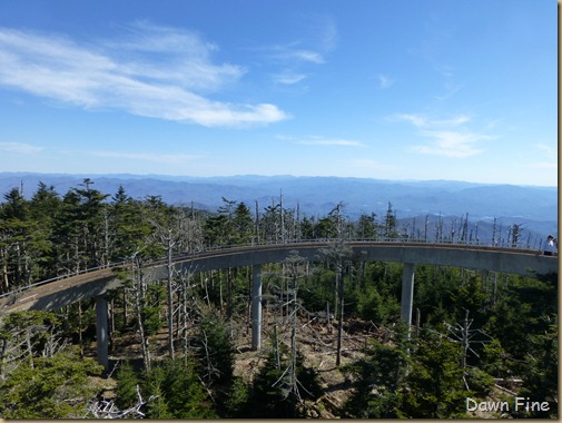 Clingmans dome_021