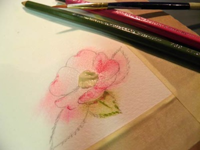 BarbDerksen_watercolorrose4