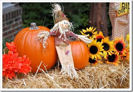 Finley Scarecrow