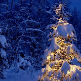 Navidad%2520Fondos%2520Wallpaper%2520%2520774.jpg