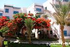 Фото 10 Zahabia Village & Beach Resorts