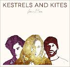 Kestrels and kites_web.jpg