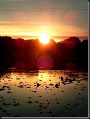 Caiman sunset - Tony