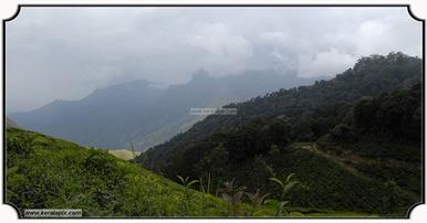 MNR_301_www.keralapix.com_DSC0301
