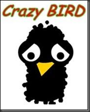 Crazybirdinicio