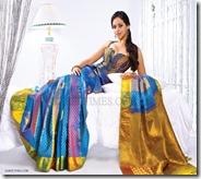 Bhavana_Bridal_Saree_Show (11)