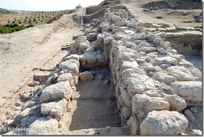 Gezer casemate wall excavations, tb070506121
