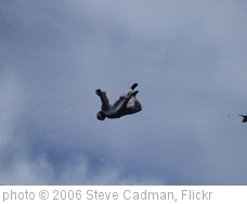 'Skydiving in Central London!!' photo (c) 2006, Steve Cadman - license: http://creativecommons.org/licenses/by-sa/2.0/
