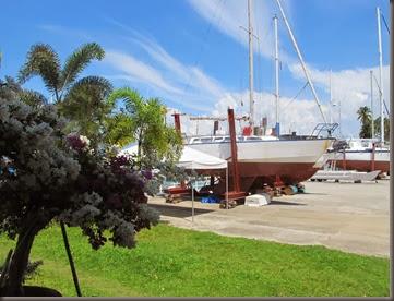 photo of oceanview marina samal island phillippines