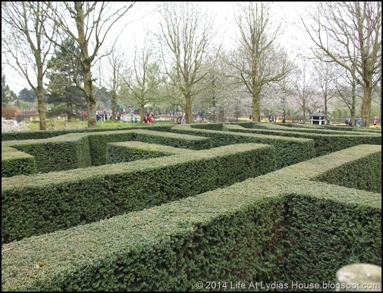 Keukenhof Gardens 4