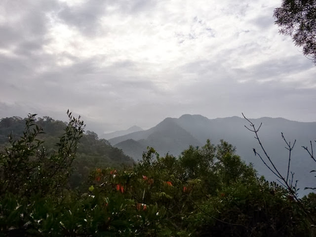 2013_0127 白賓山、真笠山、笠頂山 O走_011