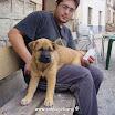 Anuario - Fotos - 2002 - 2002 Logroño