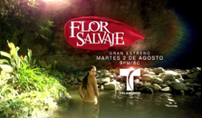 Flor Salvaje, capitulo , capitulos