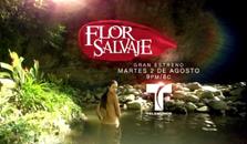 Flor Salvaje, capitulo , capitulos