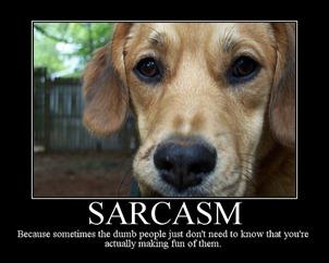 Sarcasm 3