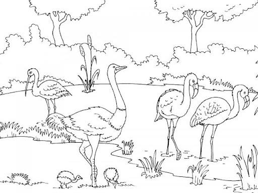 Zoo Entrance Drawing