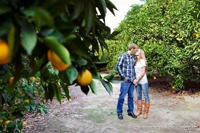 _Samantha_Melanson_citrus grove engagement