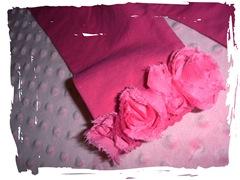 pink-pants-trim