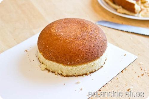 Cheeseburger Cake (3 of 23)