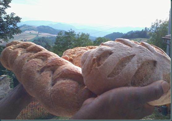 mary valeriano pane lievito levain fermento