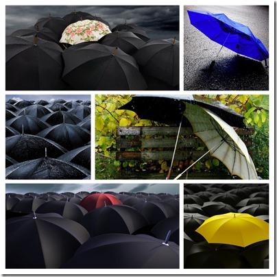 week 37 - umbrellas copy