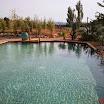 2015 03 01 piscine bois modern pool (85).jpg