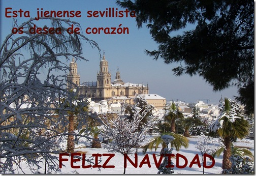 nieve-en-jaen-2006-009