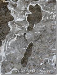 liquid ice III