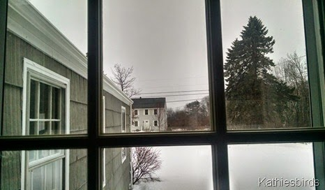 2. 3-14-15 gray day-cell pic