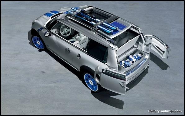 minicars029