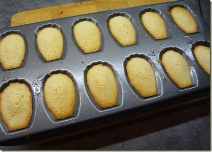 madeleines1c