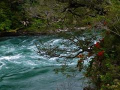 The mighty Futaleufu river, Chile.