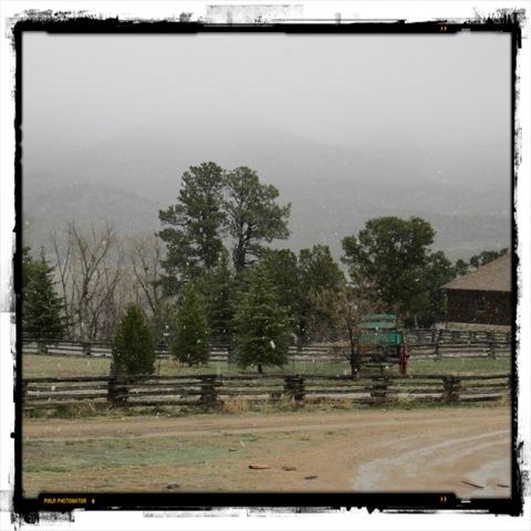 May 9 2013 SNOW (2)