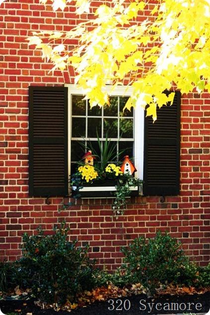 fall house 10