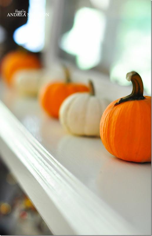 fall pics-0007