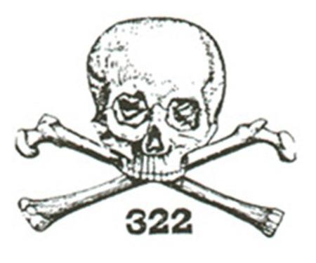 skullbones_thumb3