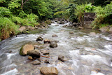Crossing The River - Roseau, Dominica