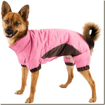 ropa para perros-d