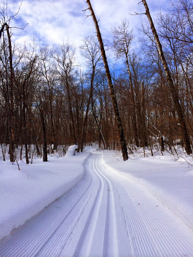 Fresh groomed track on Roy's Run Wednesday morning
