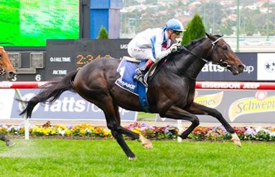 http://sportingphotos.com.au