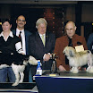 Honden » Gippe Van 't Livinusbos