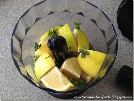 Limonada - mixam lamaile