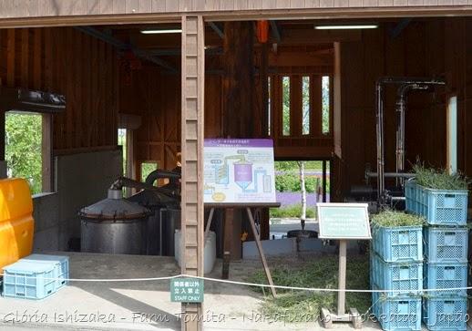 Glória Ishizaka - Farm Tomita 94